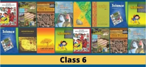 Read more about the article Latest NCERT Solutions for Class 6 – Maths, Science, English, Hindi, Social Science